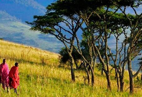 sunsafaris-5-magical-migration-and-beach-tour-of-tanzania.jpg