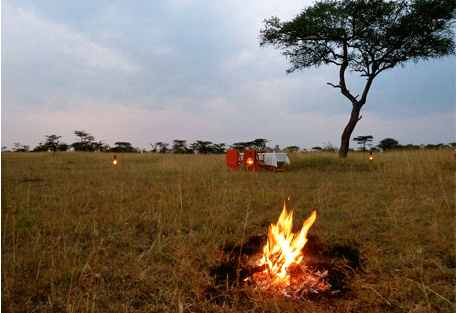 456c_serengeti-mara-camp_dinner.jpg