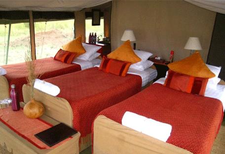 456b_ubuntu-camp_triple-bed.jpg