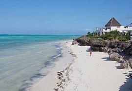 Zanzibars.jpg