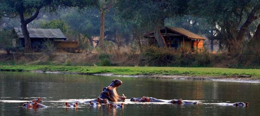 2-chongwe-river-camp.jpg